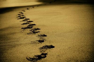 新しい人生のスタートを始めるには?人生の扉を開けるカギはお金と情報と行動の3つ!