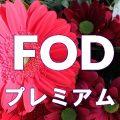 FODプレミアムを2ヵ月以上無料で視聴する裏ワザ。見逃したフジテレビの動画もバッチリ!